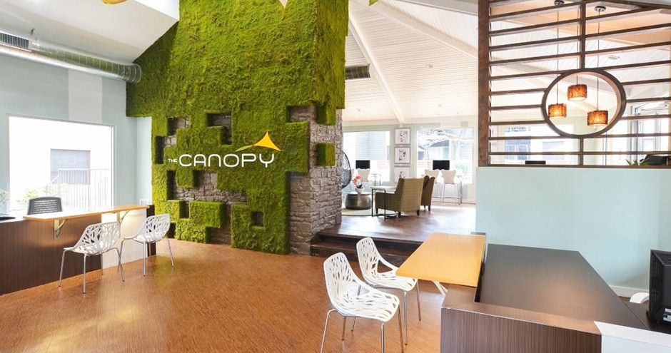 The Canopy Apartments For Rent 950 Bitters Road East