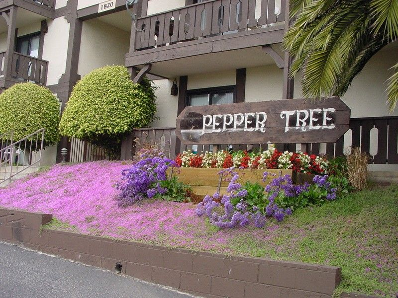 Peppertree Apartments For Rent Hermosa Beach