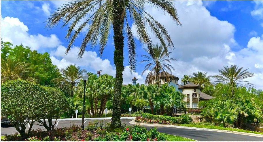 Falls At New Tampa Apartments For Rent 13400 Arbor Isle