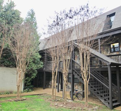 637 Battery Place 6 Chattanooga Tn 37403 2 Bedroom Apartment For Rent For 1 825 Month Zumper