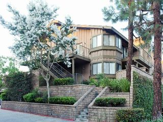 5300 Canyon Crest Dr. Apartments for Rent - 5300 Canyon ...