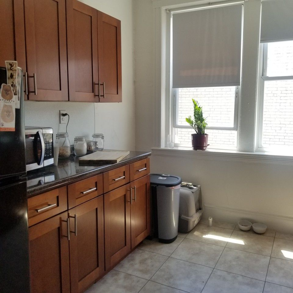 1810 Commonwealth Avenue #33, Boston, MA 02135 1 Bedroom