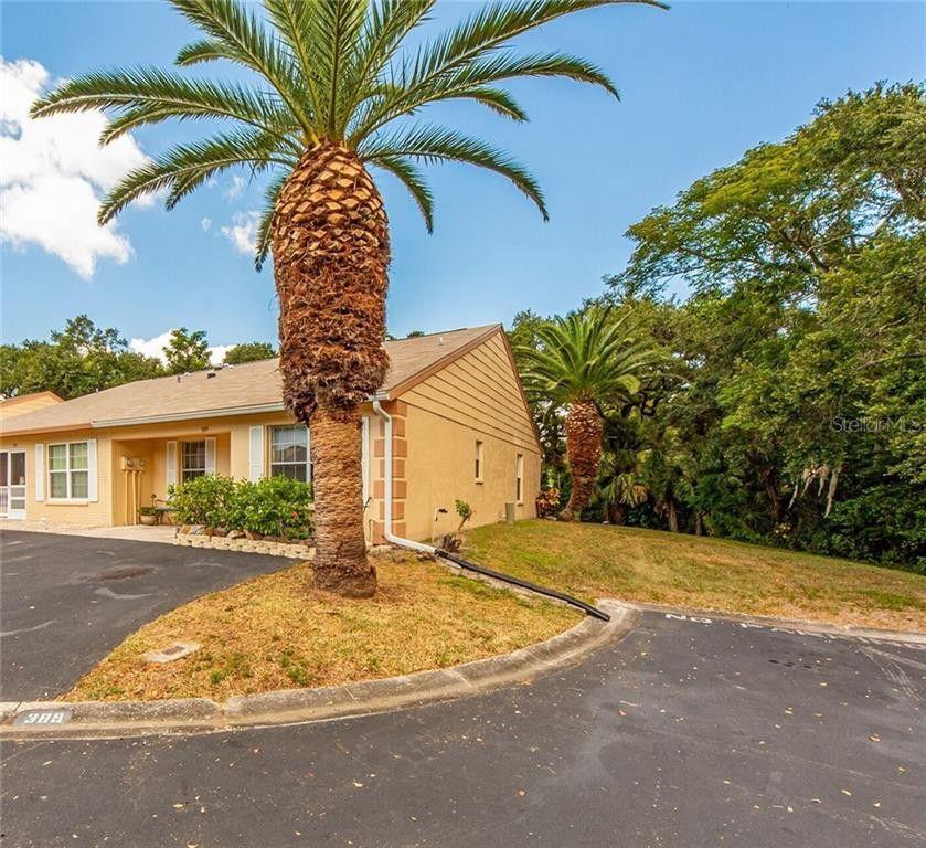 389 Estero Court, Safety Harbor, FL 34695 2 Bedroom