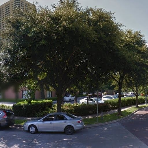 Circle At Hermann Park Apartments For Rent